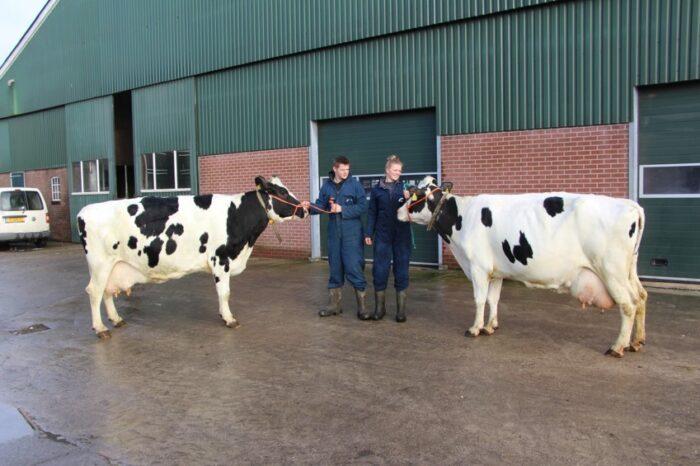 2 halfzussen met 100.000 kg melk